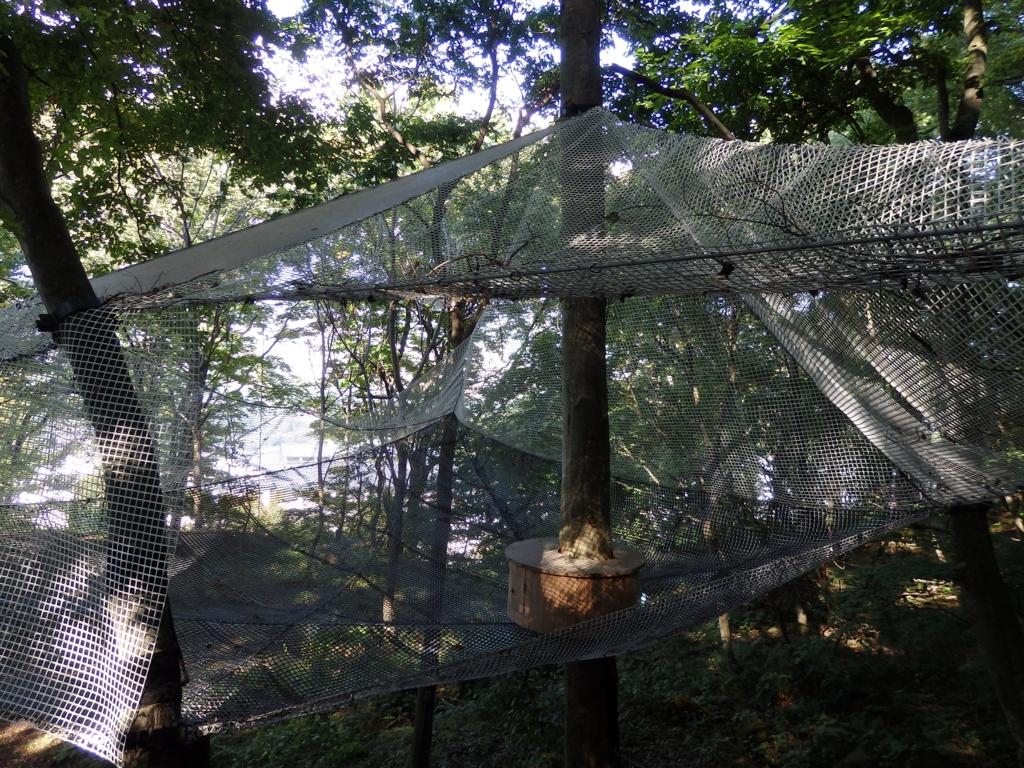 長野県・小諸ツリーハウスプロジェクト