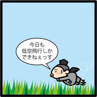f:id:morinosakana:20170726114436p:plain