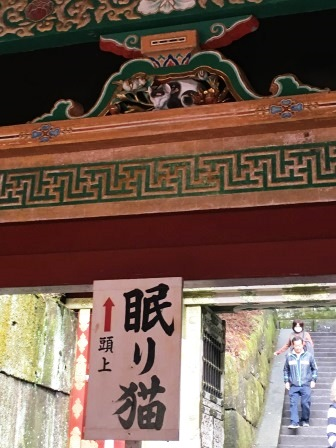 f:id:morinosizukuceo:20160404124416j:plain