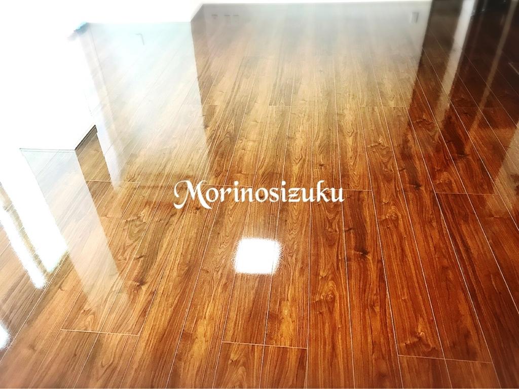 f:id:morinosizukuceo:20170705163631j:plain