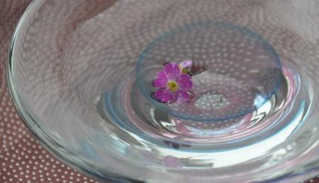 f:id:morinui:20110523130414j:image