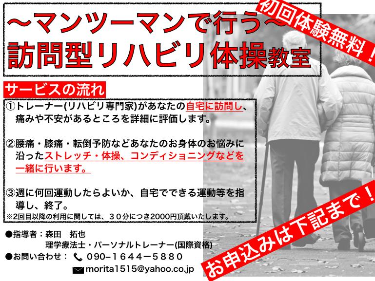 f:id:moritaku-PT:20200202095621p:plain