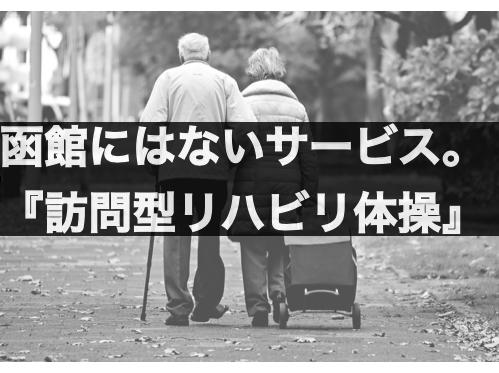 f:id:moritaku-PT:20200202121100p:plain