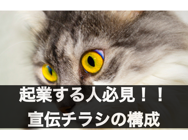 f:id:moritaku-PT:20200227153830p:plain