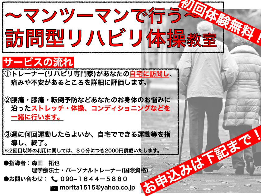 f:id:moritaku-PT:20200501114734p:plain