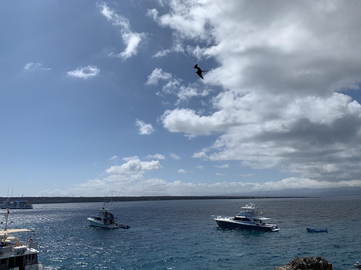 海上に停泊するボート