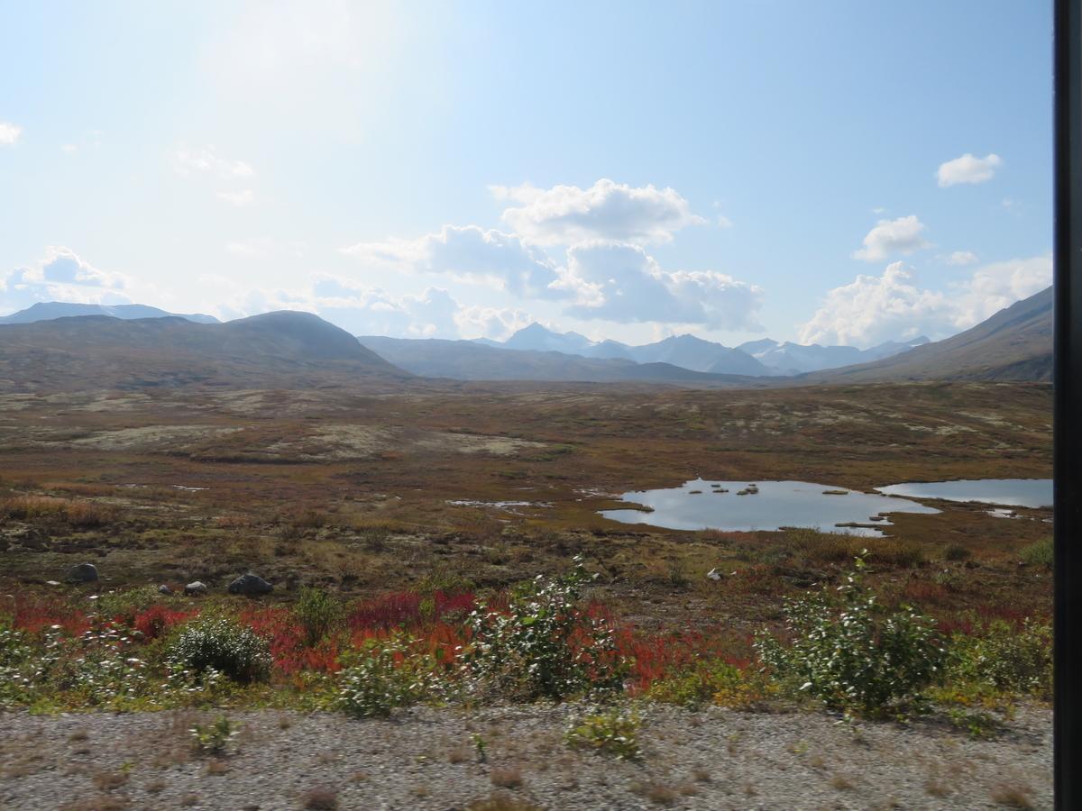 山の大自然
