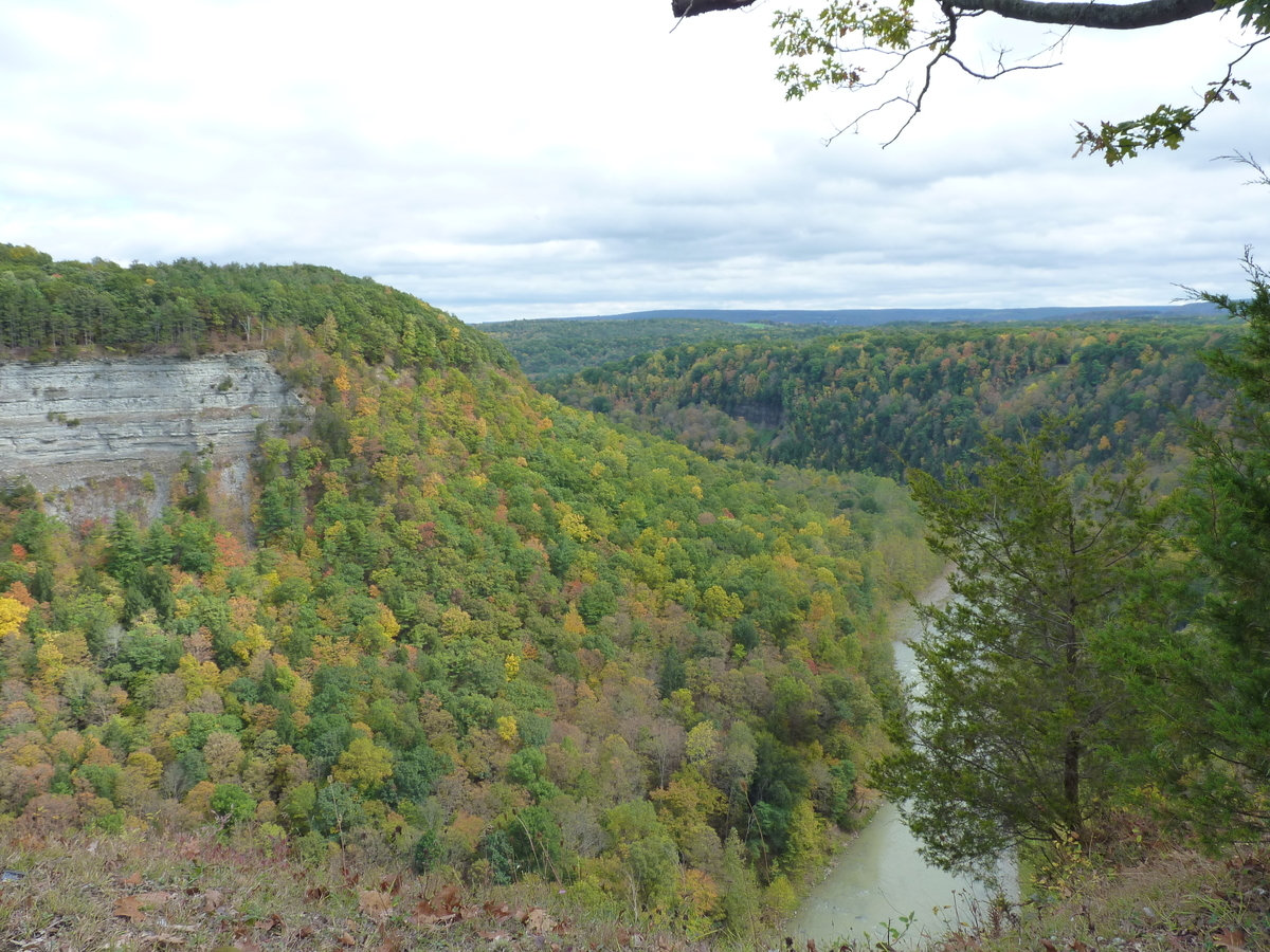 紅葉する渓谷