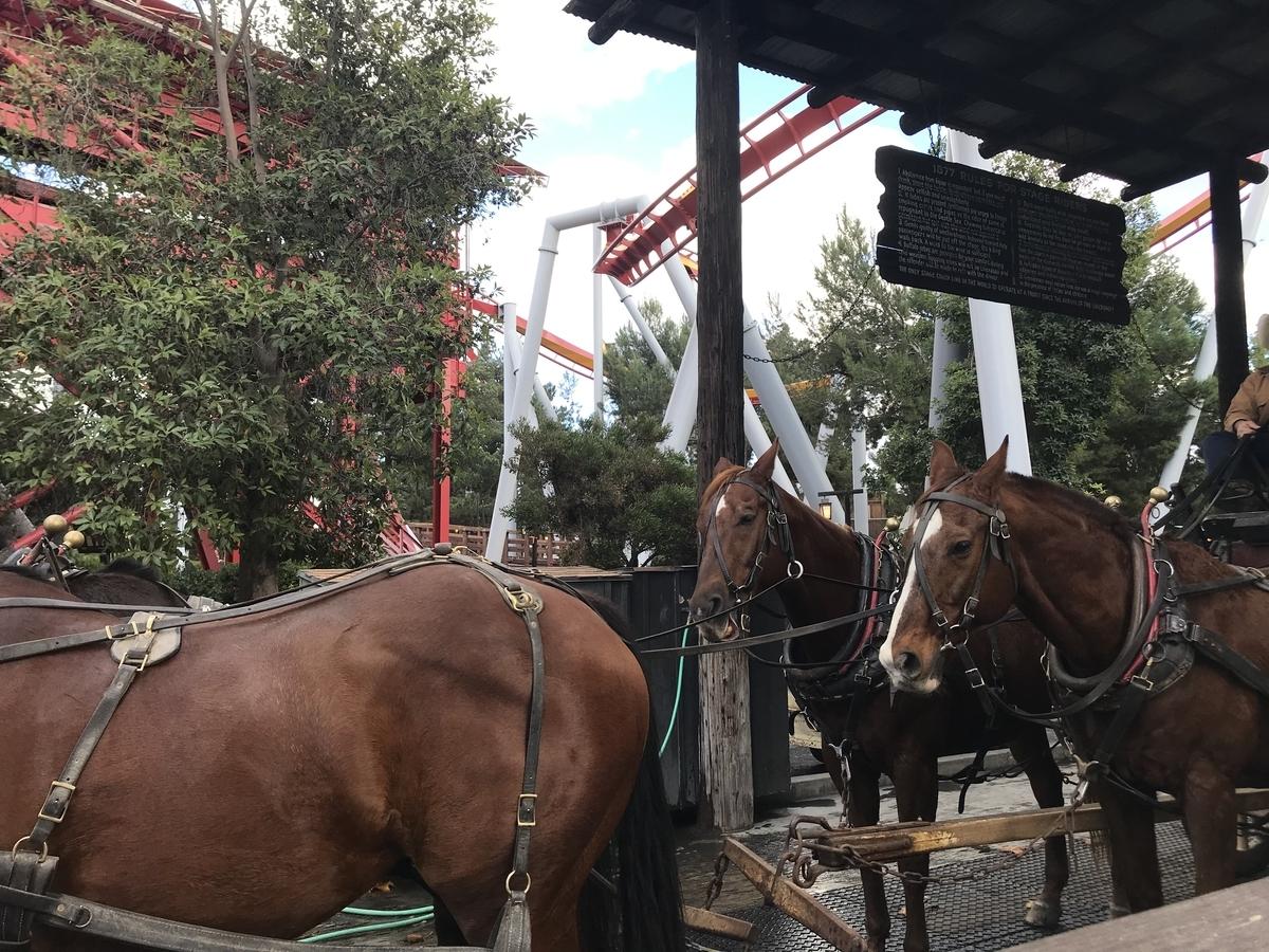 馬車を引く馬