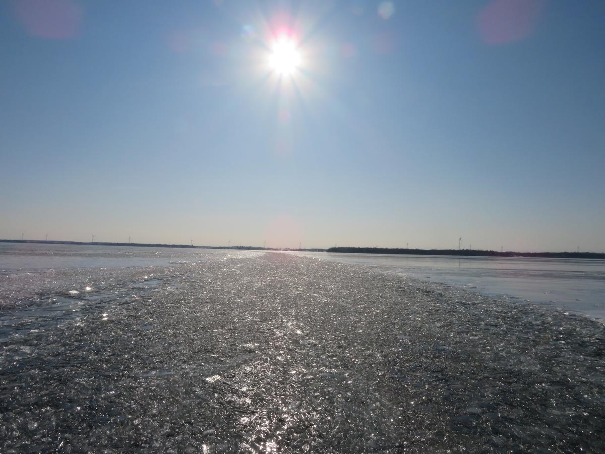湖に張った氷
