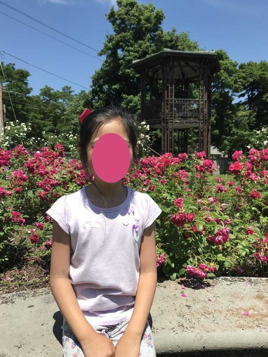 バラが咲く庭園