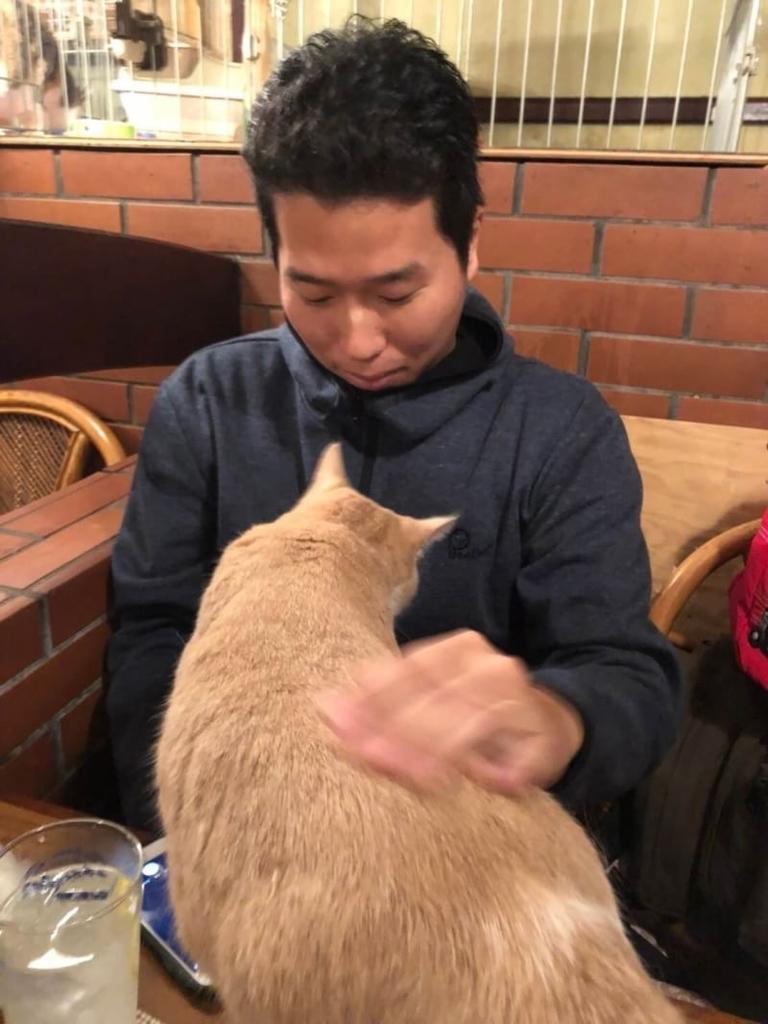f:id:moriyamatomohito:20181113224525j:plain