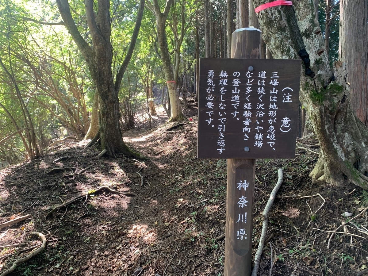 f:id:moriyamatomohito:20201001231612j:plain