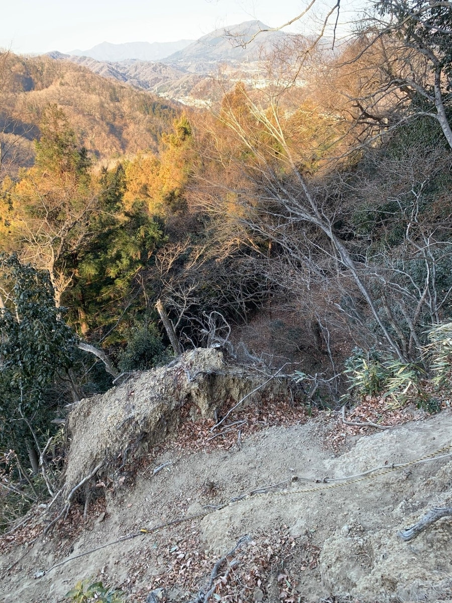 f:id:moriyamatomohito:20210123132815j:plain