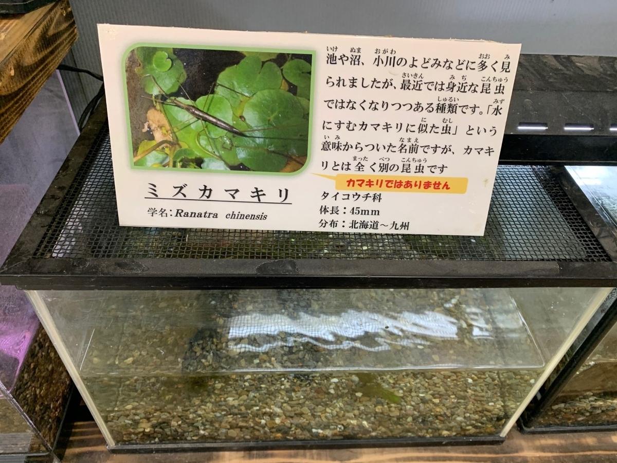 f:id:moriyamatomohito:20210212200631j:plain