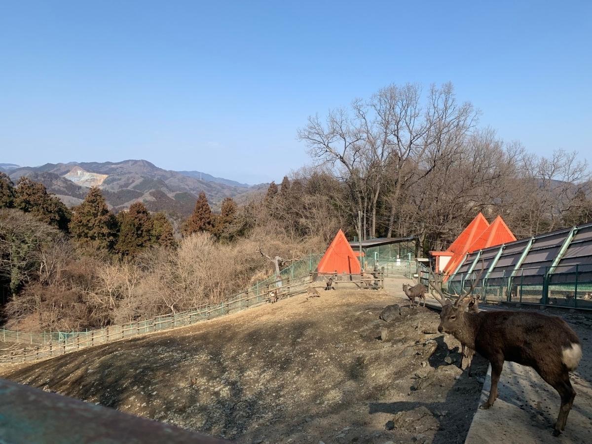 f:id:moriyamatomohito:20210212201102j:plain