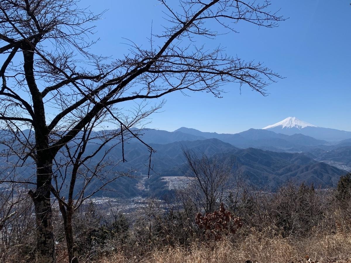 f:id:moriyamatomohito:20210221114508j:plain