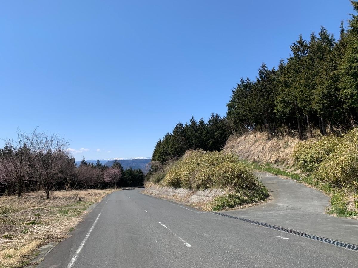 f:id:moriyamatomohito:20210417000358j:plain