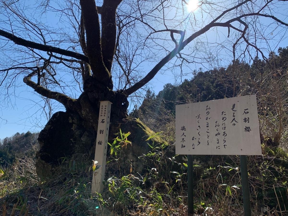 f:id:moriyamatomohito:20210417101250j:plain