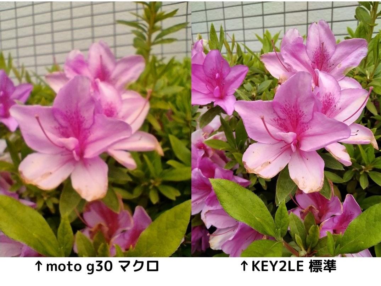 f:id:moroheiyablog:20210509015911j:plain