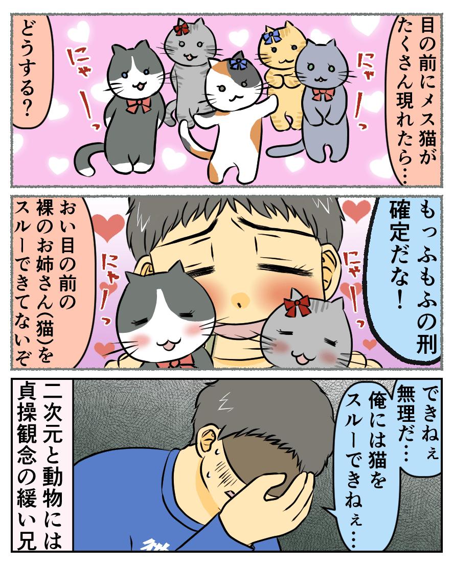 目の前にメス猫がたくさん現れたら…どうする?もっふもふの刑確定だな!おい目の前の裸のお姉さん(猫)をスルーできてないぞ。できねぇ。無理だ…俺には猫をスルーできねぇ…。二次元と動物には貞操観念の緩い兄