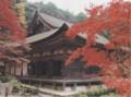 [湖東三山]金剛輪寺の本堂