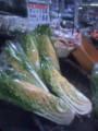 黄色い白菜