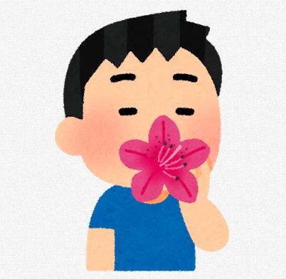 f:id:mosimosigarake4423:20190706203300p:plain