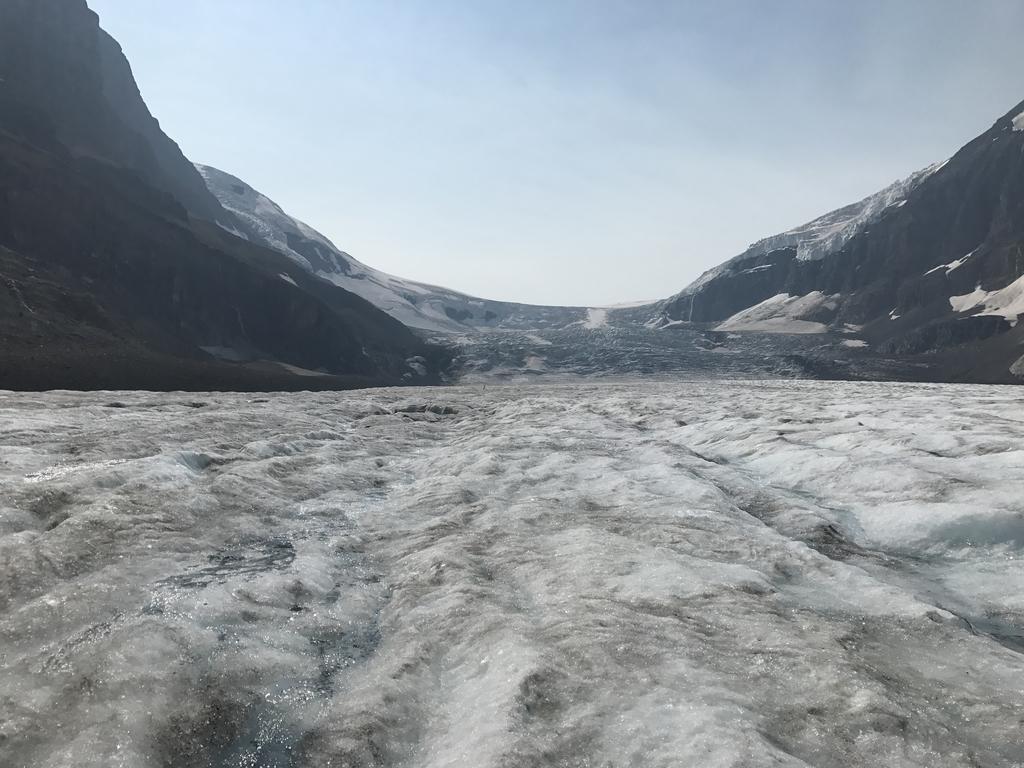 コロンビア氷原