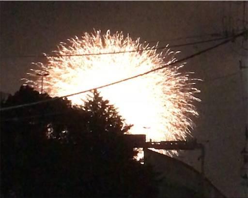 隅田の花嵐