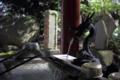 [神社]静岡県熱海市 来宮神社