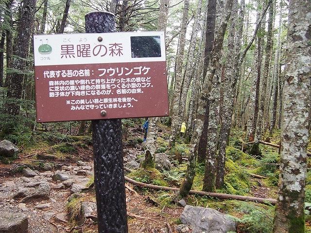 f:id:mosura8mosura:20171012161420j:plain