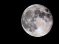 十六夜月 モノクロで