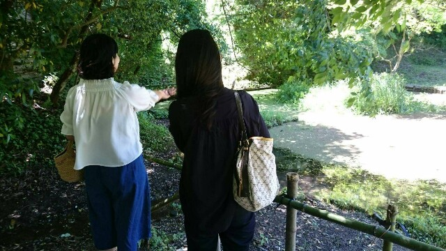 f:id:motherhiromi:20170527051458j:image