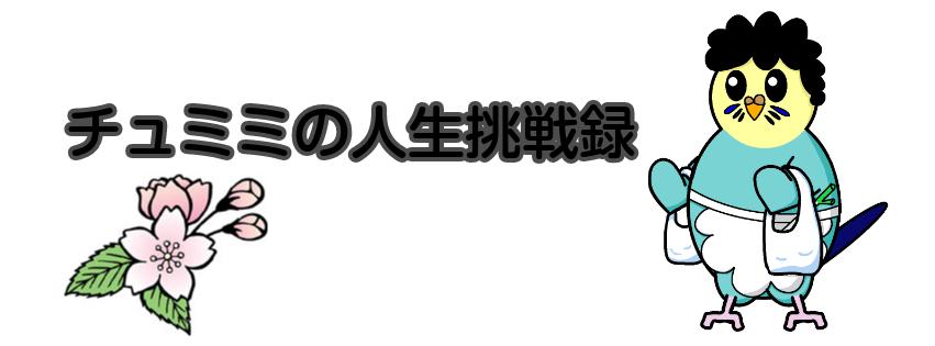 f:id:motherteresax:20210714163116p:plain