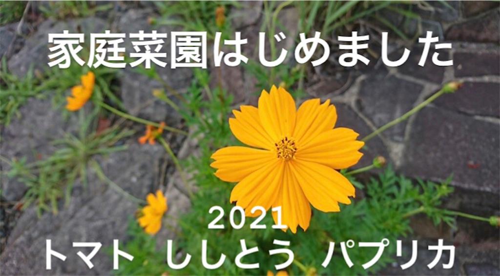 f:id:motikoblog:20210911224510j:image