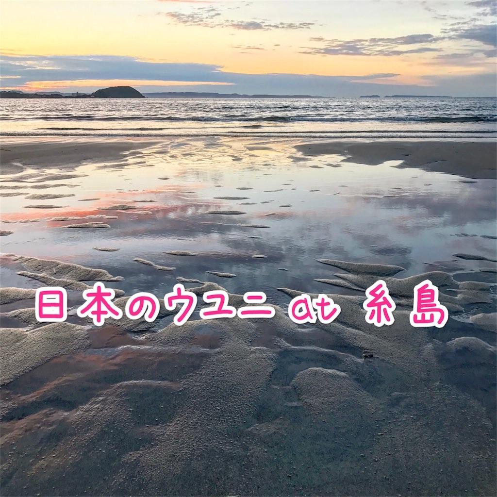 f:id:motohashiheisuke:20170210124755j:plain