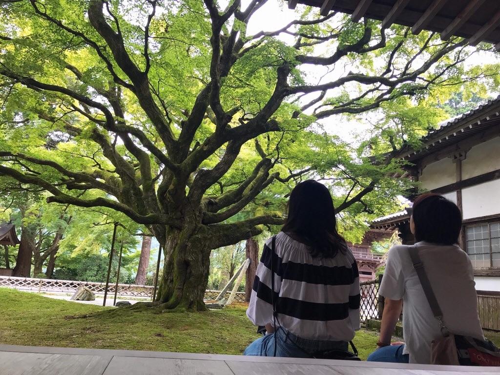 f:id:motohashiheisuke:20180919201803j:plain