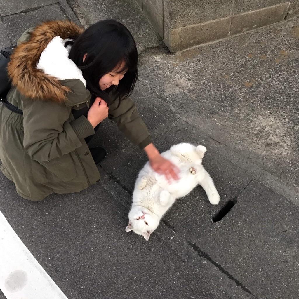 f:id:motohashiheisuke:20190508162526j:plain