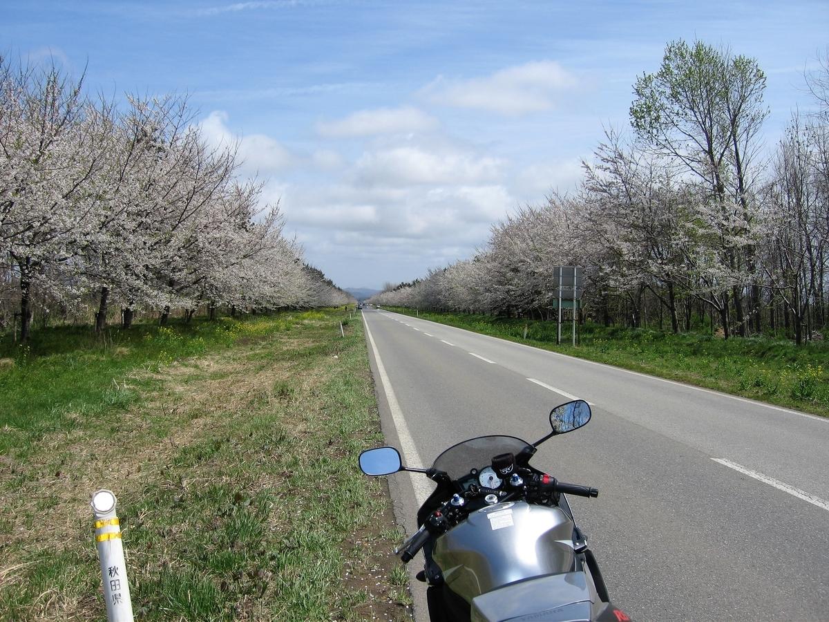 f:id:motokg:20050502114132j:plain
