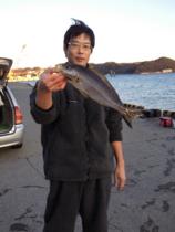 f:id:motomachi_iso:20110122164000j:image