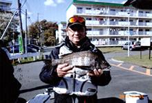 f:id:motomachi_iso:20140424185427j:image