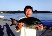 f:id:motomachi_iso:20140523093757j:image