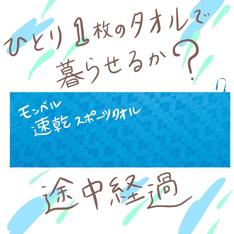 f:id:mount-hayashi:20161028010711j:plain