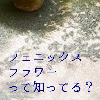 f:id:mount-hayashi:20170923171023j:plain