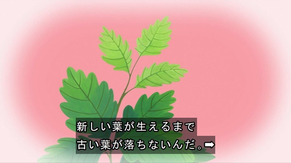 f:id:mouseion:20210502190117j:plain