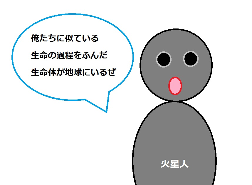 f:id:mousoumajyo:20201207163456j:plain
