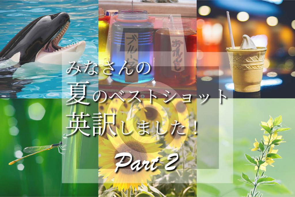 【食べ物・動植物編】夏フォト英訳しました・パート2