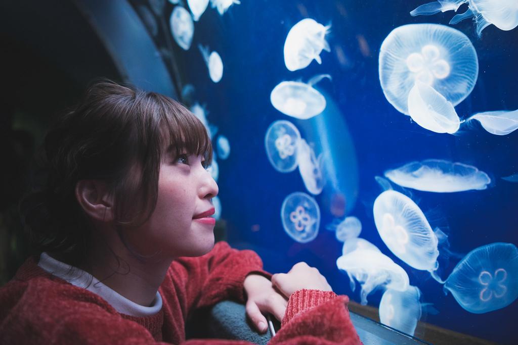 SNS投稿が楽しくなる英語表現10【お出かけ英語~サンシャイン水族館 編】