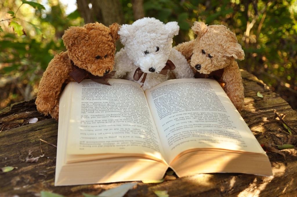 楽しみながら続ける「多読三原則」